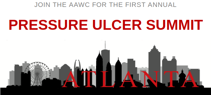 First Annual Pressure Ulcer Summit